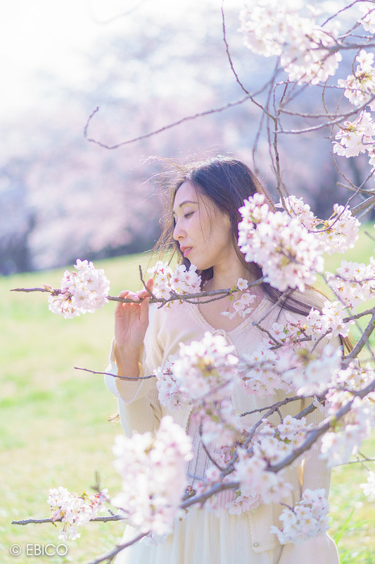 桜の咲く丘 夕暮れの光【モデル:和田晶子さん】