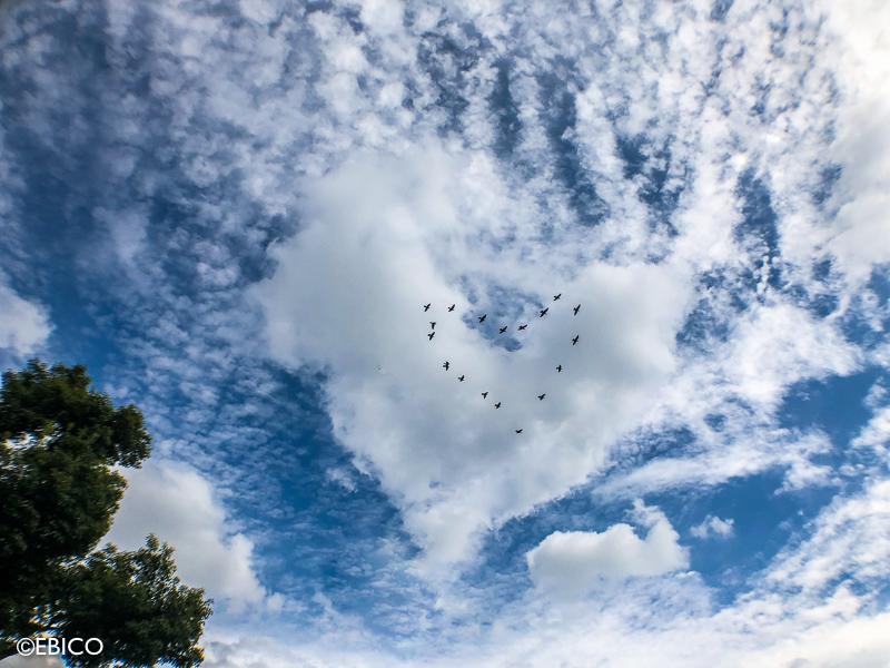 ハート型の雲♪【iPhoneで撮った写真を加工してみました】