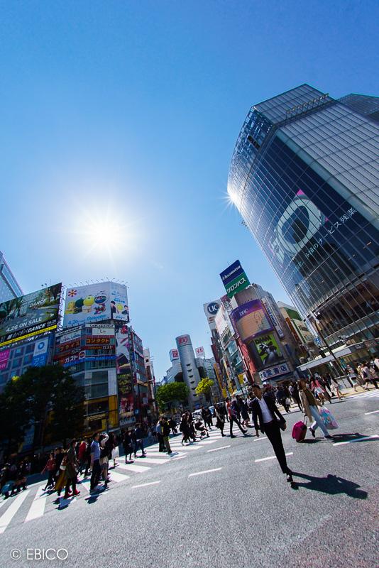 夏の陽射しと渋谷スクランブル交差点♪