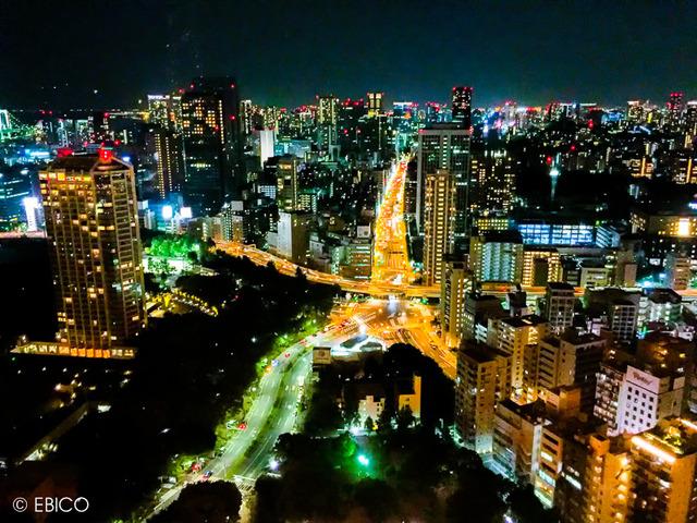 きらめきの海 ときめきの川【東京タワー夜景】
