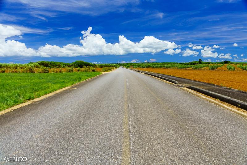 美しい夏の路上で感じる景色【沖縄紀行・伊良部島】