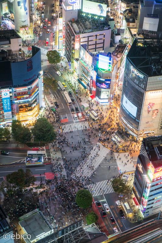 渋谷スカイのオープン初日に行ってきました♪【渋谷スクランブルスクエア】