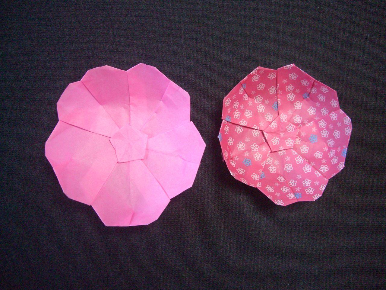 すべての折り紙 桃 折り紙 折り方 : origami おりがみ遊び(桃の花から ...