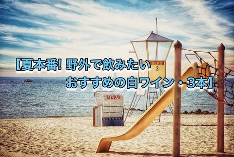 ブログ 夏