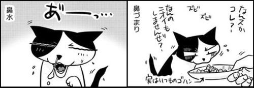 nekokawa02