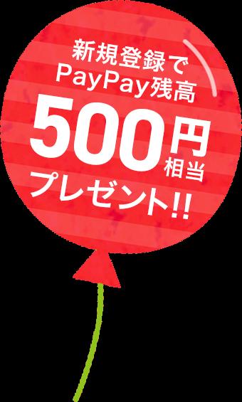 campaign500
