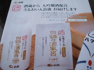 2010_0221wain0003