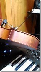 ViolinNonChest