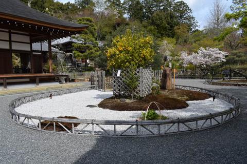 龍神遊行の庭-橘