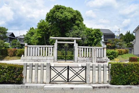 神楽岡東陵