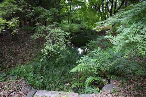奈良の小川-復元