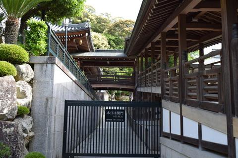 龍王滝への参道