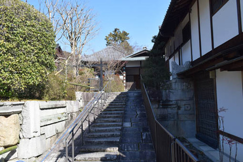 玄関への石段