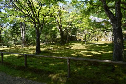 かわらかけ投げ場前の庭
