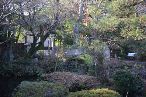 舎那院-池