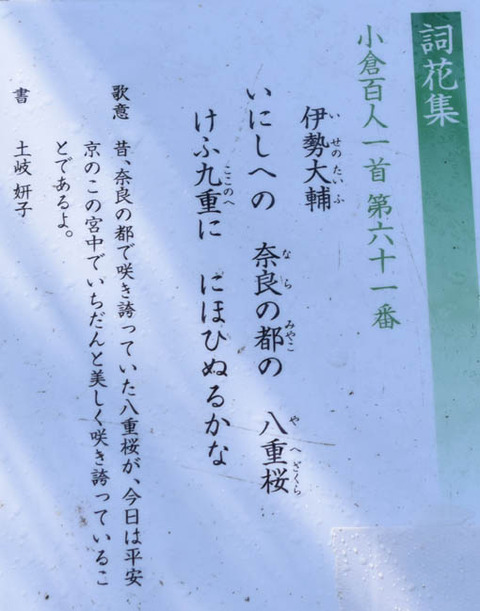 詞歌集-伊勢大輔-説