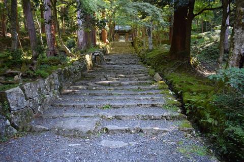 仁王門への石段