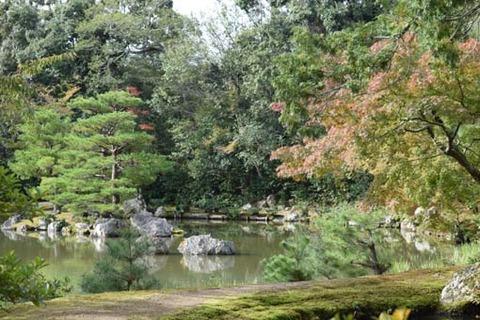 鏡湖池-北側からの景色