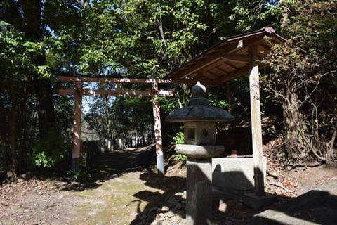 針神社-鳥居