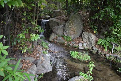西神苑-滝