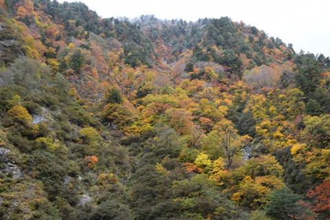 名剣橋先の山