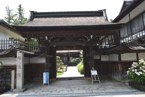 櫻池院-山門