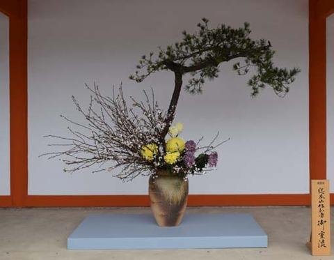 生け花-3