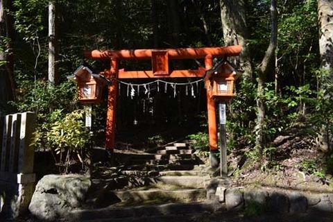 稲荷神社-鳥居