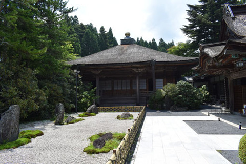櫻池院-庭園2