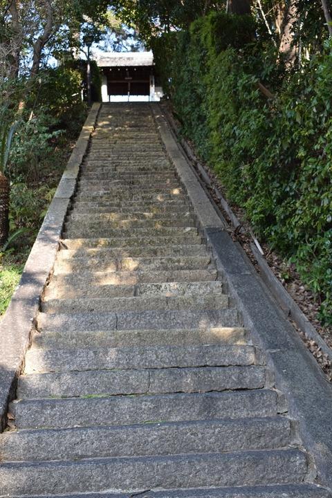 大念寺-石段