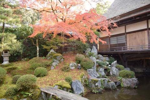 茶室-庭園