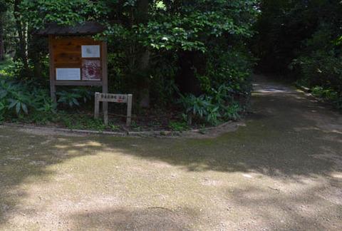 奈良殿神地への分岐
