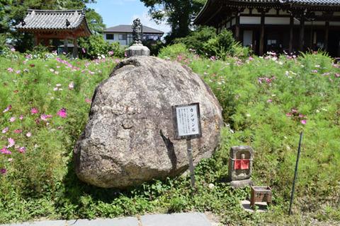 カンマン石