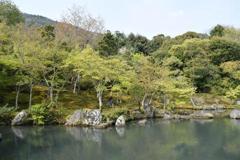 曹源池-南側