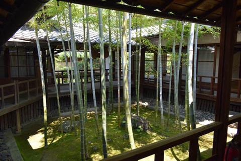 孟宗竹の坪庭