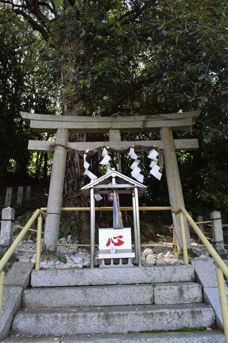酒殿神社-鎌神社