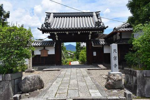 天寧寺-山門