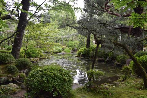 南神苑-池