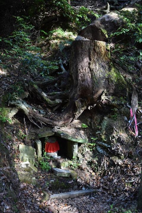 木の根の石仏