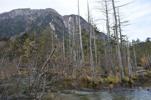 岳沢湿原を迂回