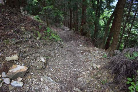 山道-ロープ