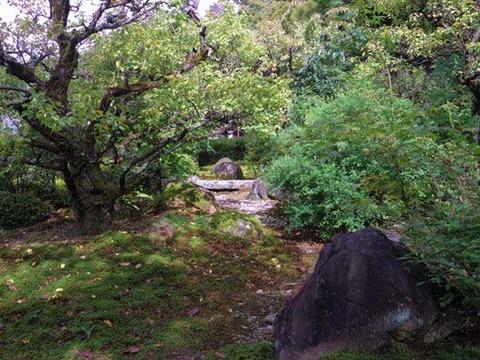 三重塔前の庭