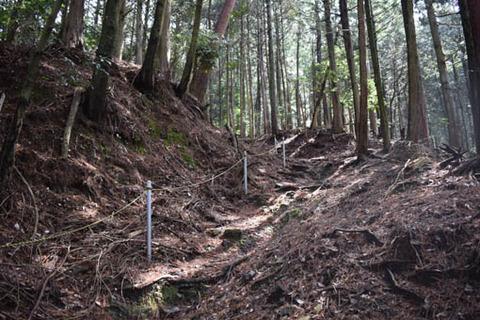 御所谷碑への登山道