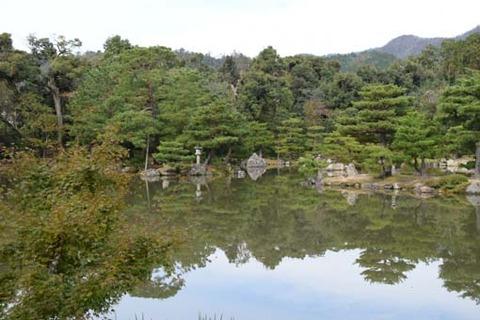 鏡湖池-西側