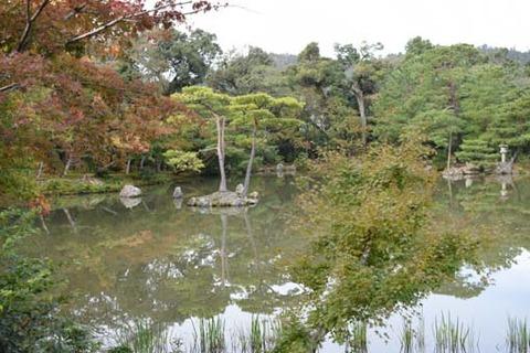 鏡湖池-南側