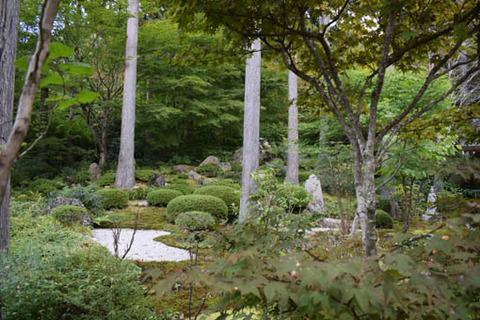 慈眼の庭-1