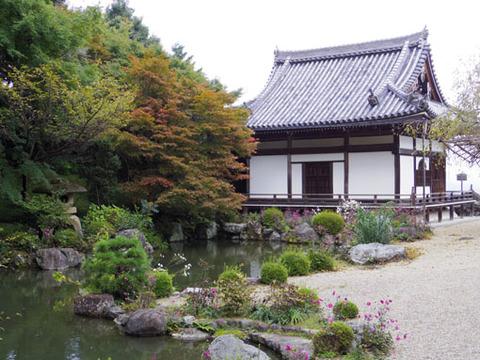 蓮華寿院の庭-1