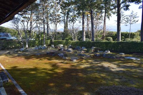 庭園-北東側