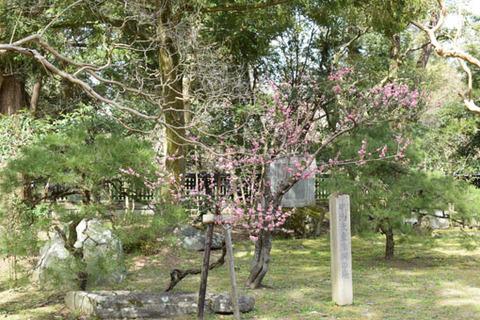 中山邸跡-2