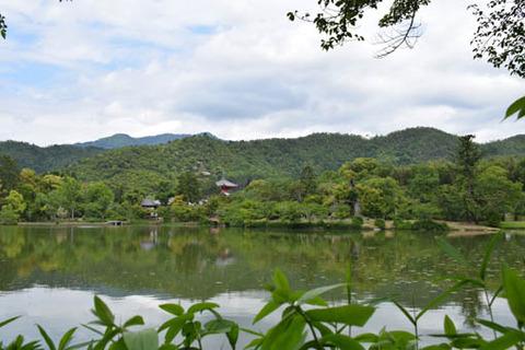 大沢池の東北岸